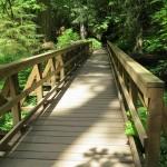 bridge-2142385_1920